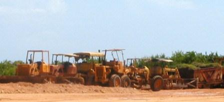 Con el arribo de la Revolución Cubana se acentuó el daño a la naturaleza de la isla.